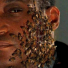 Candyman Trilogy Bee Stings