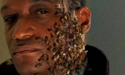 Candyman Trilogy Bee Stings