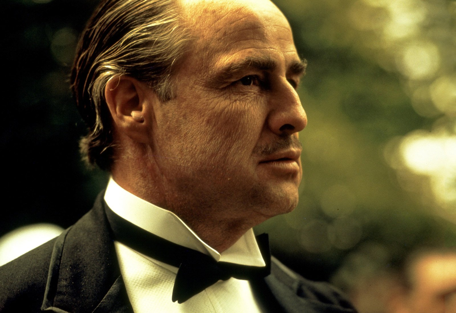 The Godfather Top 500 Movies of All Time