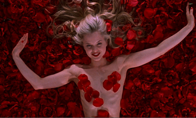 American Beauty Roses Metaflix Movie Detail