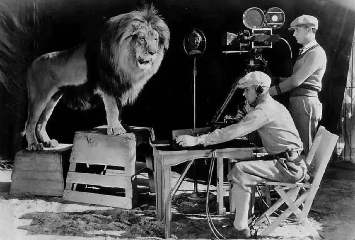 The 7 Lions of MGM's Classic Logo