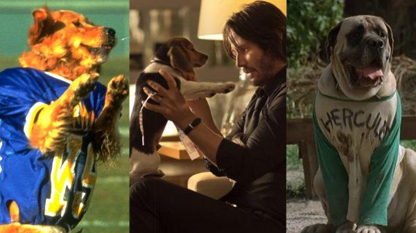 Best Dogs in film